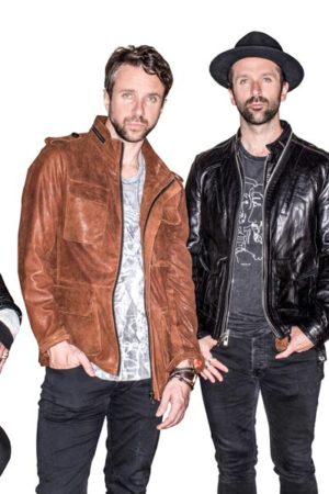 The-Trews-Colour-Web